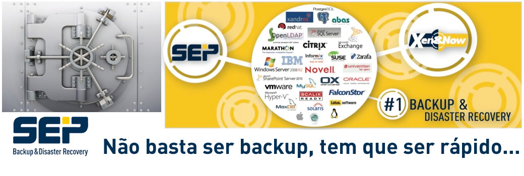 SEP - Backup e Disaster Recovery